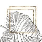 För sidavektor för sommar tropisk design med den guld- ramen Abstrakt blom- bakgrund Inbjudan eller kortdesign med Arkivfoton