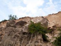 för skinkamuinen för kanjonen tien den felika strömmen vietnam Arkivbild