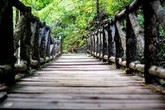 För skoggranskning för bro wood trottoar royaltyfri foto