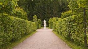 ` För skulptur`-luft i parkera Peterhof odla springbrunnar som stora historiemuseer ett parkerar peterhofryss arkivfilmer