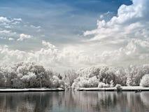 för slottpark för kuskovo stort damm Royaltyfri Bild