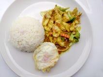För slut grönsak för gräsplan upp stekt curry med höna på maträtt, läcker stekt stekt grönsak med hönagräsplancurry, thailändsk m Arkivfoto
