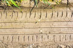 För slut lerigt gummihjulspår upp på jordningen Arkivfoto