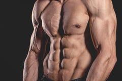 För slut perfekt abs upp Sexig muskulös manlig torso sex packar Royaltyfri Fotografi