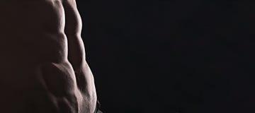 För slut perfekt abs upp Sexig muskulös manlig torso sex packar Royaltyfria Bilder