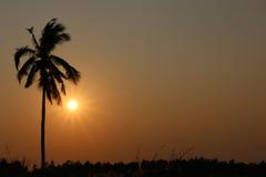 För solnedgången Royaltyfri Fotografi