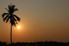 För solnedgången Arkivbilder