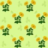 För solrosguling för modell grön design för tapet för abstraktion för flora Royaltyfria Bilder