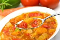 för soupstew för bröst feg blandad grönsak Royaltyfri Foto