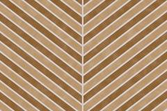 För sparrebandet för naturen texturerade den bruna modellen på papper bakgrund Royaltyfri Fotografi