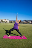 för sporttema för kobra utomhus- park skjuten yoga Royaltyfri Foto