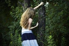 för ståenderomantiker för skog grön kvinna royaltyfri fotografi