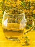 för st-tea för jonn s wort Royaltyfri Foto