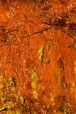 För stenvägg för bakgrund naturlig våt orange textur Arkivbilder