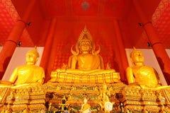 för stor vägg för tak buddha för backgro guld röd royaltyfri foto
