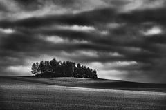 För stormen Fotografering för Bildbyråer