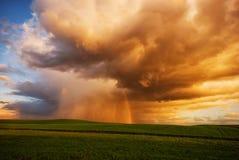 För stormen och guld- fält Royaltyfria Bilder