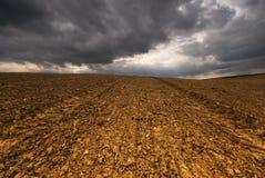 För stormen och guld- fält Fotografering för Bildbyråer