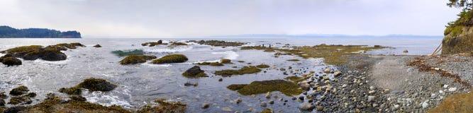 för strand Stillahavs- panorama- northwest Royaltyfri Bild