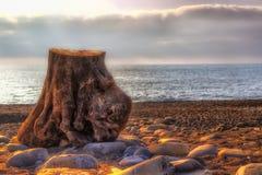 För strandhav för stubbe steniga moln för stillhet Arkivbild