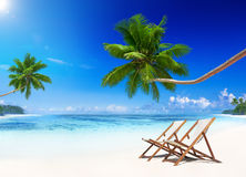 För strandsommar för solstol tropiskt begrepp för semester Arkivfoton