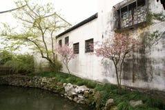för suzhou för kines trädgårds- white vägg Arkivbilder