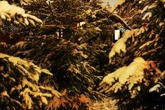 för switzerland för snow för det Europa liggandefotoet trees tid övervintrar fotografering för bildbyråer