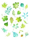 för symbolsleaves för formgivare grön vektor Royaltyfri Foto