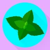För symbolsmintkaramell för vektor plana sidor, gräsplan, blått Arkivbilder