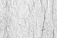 För tabelltextur för abstrakt yttersida vit wood bakgrund Slut upp nolla Arkivbilder