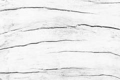 För tabelltextur för abstrakt yttersida vit wood bakgrund Slut upp nolla Fotografering för Bildbyråer