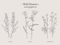 För tappningillustration för lösa blommor uppsättning royaltyfri illustrationer