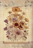 För tappningstil för blommor botanisk konst för vägg med texturerad bakgrund Arkivfoton