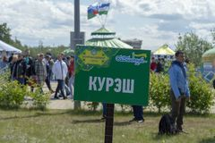 För tecken den ryska brottningen 'Quresh 'in på den muslimska ferien 'Sabantuy ?Fr?mre sikt royaltyfri bild