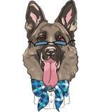 För tecknad filmhipster för vektor tysk herde för rolig hund Arkivbild