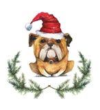 För tecknad filmvattenfärg för hand utdragen illustration av bulldoggen i jultomten hatt vektor illustrationer