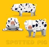 För tecknad filmvektor för svin prickig illustration vektor illustrationer