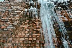 För tegelstenvägg för Closeup abstrakt gammal bakgrund med sprickais, mossa och filialer av buskar, istappar, isför mycket på teg Fotografering för Bildbyråer