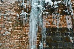 För tegelstenvägg för Closeup abstrakt gammal bakgrund med sprickais, mossa och filialer av buskar, istappar, isför mycket på teg Royaltyfria Foton