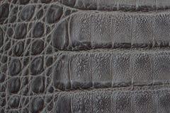 För texturbackgroundr för äktt läder som närbild utföra i relief under hudreptil, krokodilhudtryck För hantverkarebakgrund Arkivbild