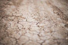 För texturbrunt för torr jord för bakgrund begrepp för torrhet för skörd för bygd för natur utomhus jord Royaltyfri Fotografi