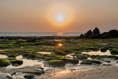 För tidvatten havssolnedgång ner i den Tana lotttemplet Bali, Indonesien Royaltyfria Foton