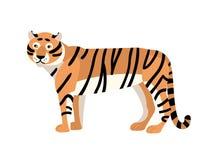 för tigervektor för bakgrund illustration isolerad white Ursnyggt exotiskt köttätande djur med det strimmiga laget Behagfull stor stock illustrationer