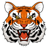 1 för tigerversion för ilsken svart färg 2 rastrerade white Royaltyfri Fotografi