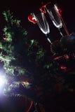 För trädgarneringar för nytt år exponeringsglas royaltyfria foton