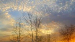 För trädsolnedgång för blå himmel moln Arkivbild