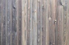 För träpanel för gammal grunge mörk brun modell med härlig abstrakt kornyttersidatextur, vertikal randig bakgrund eller bakgrunde arkivbild