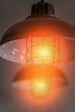 För trådhänge för vind industriella lampor mot den grova väggen Arkivbild