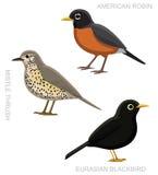 För trastuppsättning för fågel riktig illustration för vektor för tecknad film Royaltyfri Foto