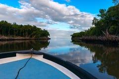 För Trinidad och Tobago för FishiBoat rittCaroni träsk mun flod Arkivfoto